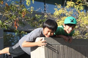 (Mis)adventures at the Cupertino Library: Bear statues, talking mice and a four-boy parkour team