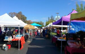 Cupertino's farmers' market: Watermelon samples and the art of bargaining