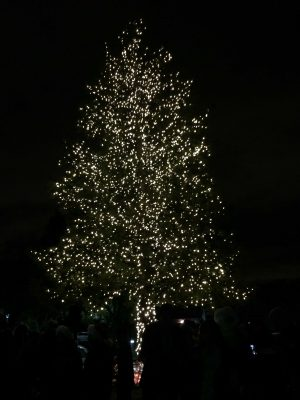 Under the tree: A timeline of the Quinlan Community Center's annual tree-lighting