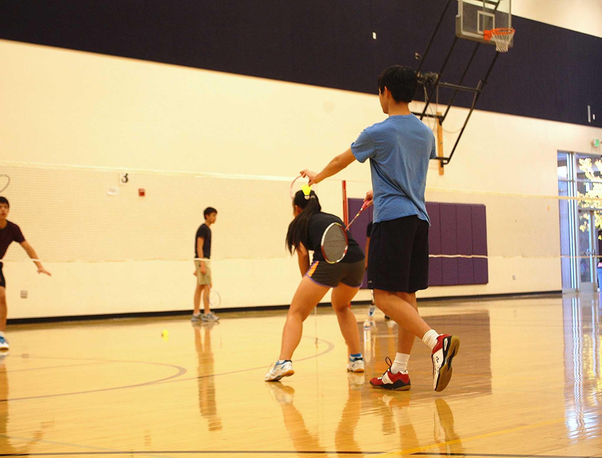 hobby badminton essays