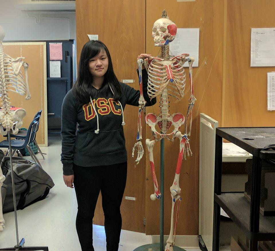 Junior Gina Yang stands with a model skeleton, affectionately known as Sherman, in the Biology TA area. Yang has both taken AP Biology with teacher Renee Fallon and assisted her as a TA.