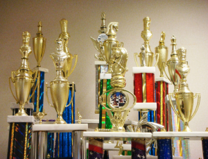 Chess club's trophies on display