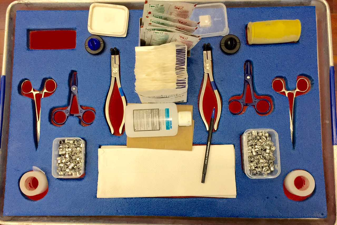 Tools staff members used in blood drives.