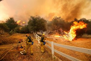 Ffirefighters from Stockton, Calif., put out flames off of Hidden Valley Rd. while fighting a wildfire, Friday, May 3, 2013 in Hidden Valley, Calif. A huge Southern California wildfire burned through coastal wilderness to the beach on Friday then stormed back through canyons toward inland neighborhoods when winds reversed direction. (AP Photo/Los Angeles Times, Mel Melcon) NO FORNS; NO SALES; MAGS OUT; ORANGE COUNTY REGISTER OUT; LOS ANGELES DAILY NEWS OUT; VENTURA COUNTY STAR OUT; INLAND VALLEY DAILY BULLETIN OUT; MANDATORY CREDIT, TV OUT