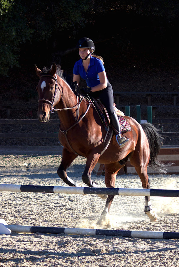 Junior Ebba Westelius rides her horse, Bojack, at the monthly IEA meeting. She practices her jumps and walks along with other riders.