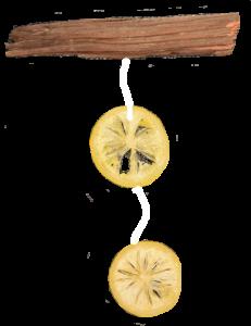 Grapefruit decoration